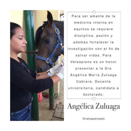 Dra. Angelica Zuluaga